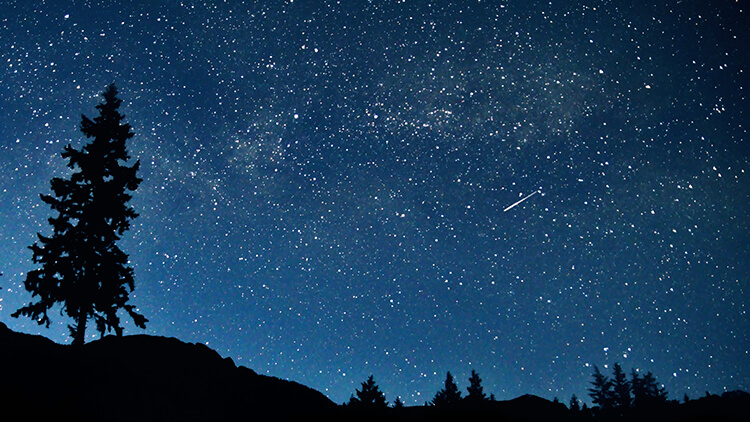 星降る夜に